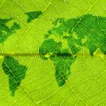 Thinkstock-ecologie